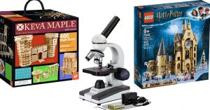 A Mighty Girl's Top Toy Picks for the 'One Big Gift'