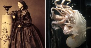 History's Hidden Figures: Meet the 19th Century French Dressmaker Who Invented the Aquarium